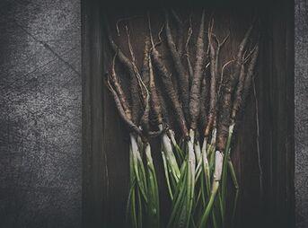 Le fruit du mois : le salsifis